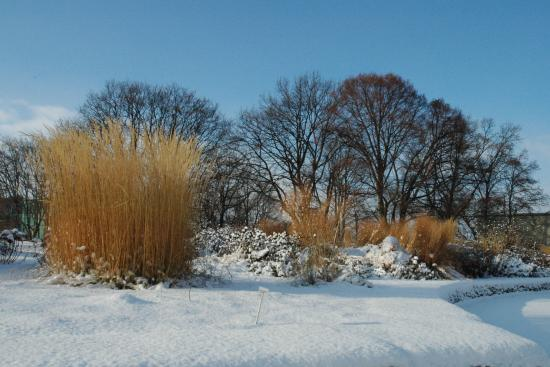 egapark im Winter 2